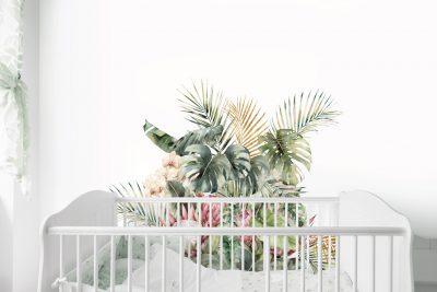 Tropical-Garden-Wall-Mural-Decals-01
